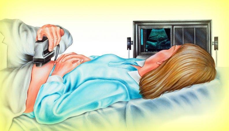 Parto humanizado começa já na descoberta da gravidez; entenda os motivos